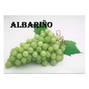 Albarino