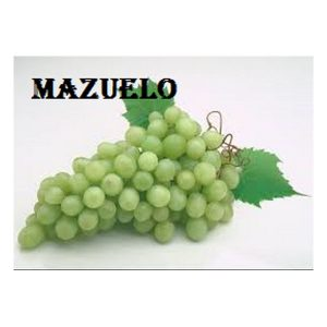 Mazuelo